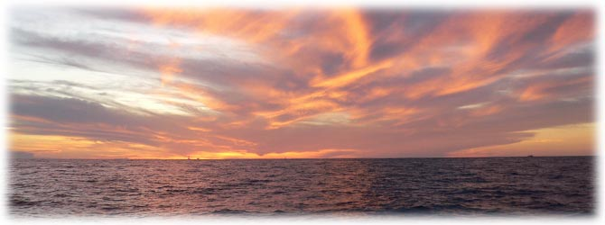 Sunset Cruise - Cabo San Lucas